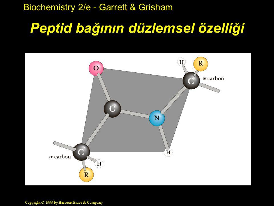 Biochemistry 2/e - Garrett & Grisham Copyright © 1999 by Harcourt Brace & Company Peptid bağının düzlemsel özelliği