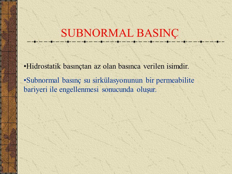 DİYAJENEZ Diyajenez esnasında oluşan bazı mineralojik değişimler süpernormal basınca neden olurlar. Örneğin montmorillonitik killer sıkışınca hem göze