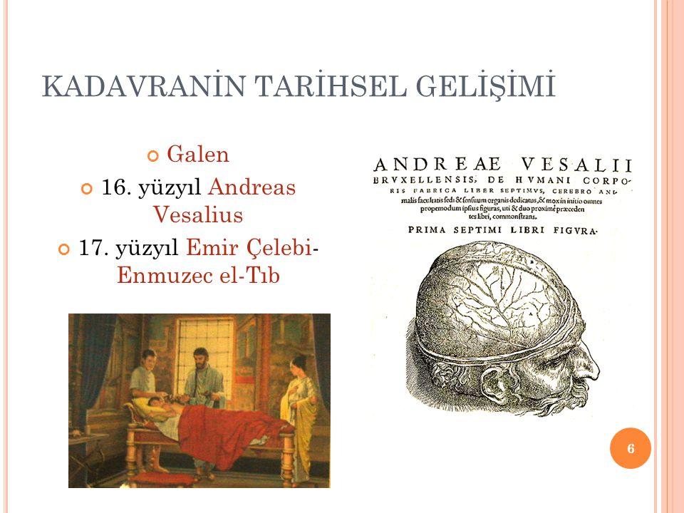 KADAVRANİN TARİHSEL GELİŞİMİ Galen 16. yüzyıl Andreas Vesalius 17. yüzyıl Emir Çelebi- Enmuzec el-Tıb 6