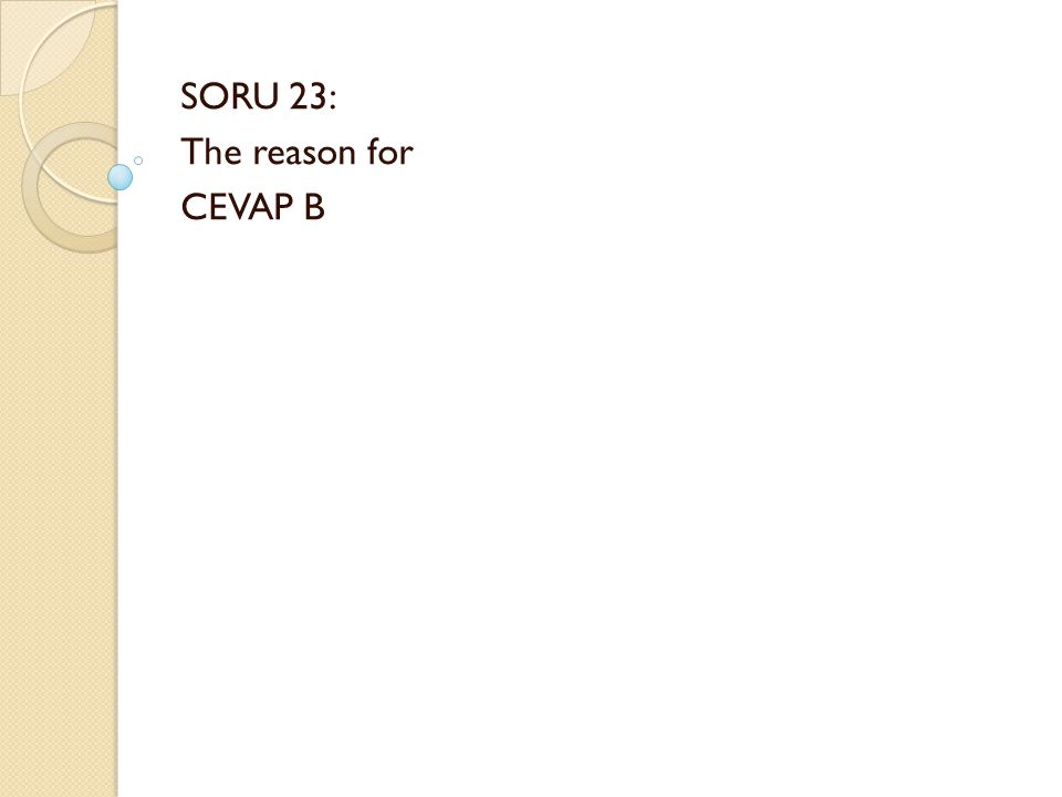 SORU 23: The reason for CEVAP B
