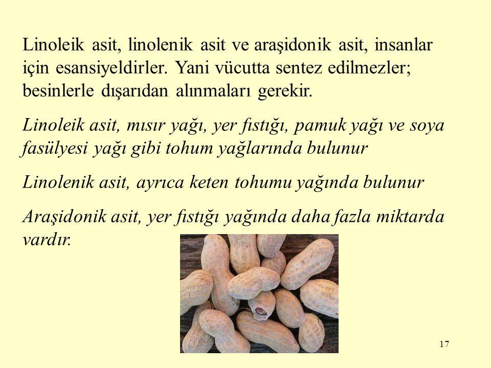 17 Linoleik asit, linolenik asit ve araşidonik asit, insanlar için esansiyeldirler. Yani vücutta sentez edilmezler; besinlerle dışarıdan alınmaları ge