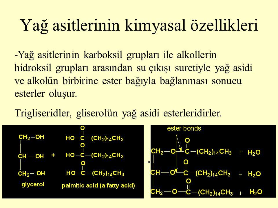 21 Yağ asitlerinin kimyasal özellikleri -Yağ asitlerinin karboksil grupları ile alkollerin hidroksil grupları arasından su çıkışı suretiyle yağ asidi