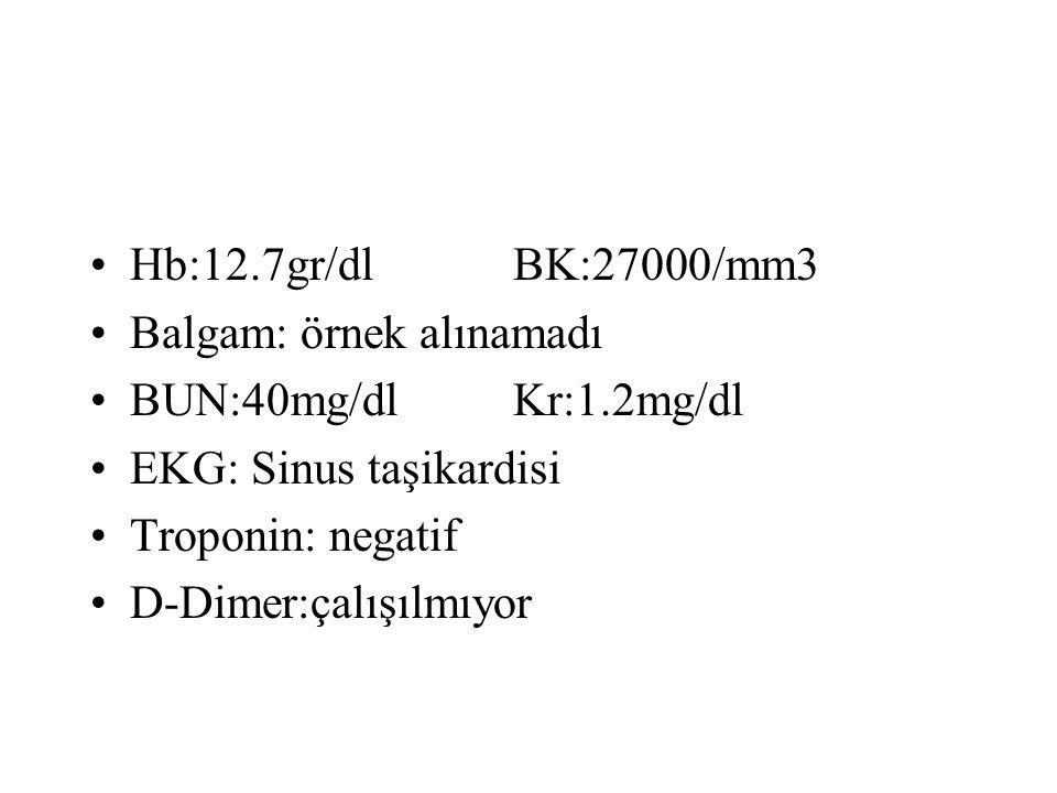 Hb:12.7gr/dlBK:27000/mm3 Balgam: örnek alınamadı BUN:40mg/dlKr:1.2mg/dl EKG: Sinus taşikardisi Troponin: negatif D-Dimer:çalışılmıyor