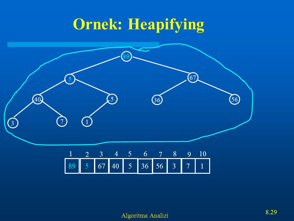 Algoritma Analizi 8.29 Ornek: Heapifying 89 67 40 5 5 1 3 7 36 56 5 67 405 36 5637189 1 2 3 456 7 8 9 10