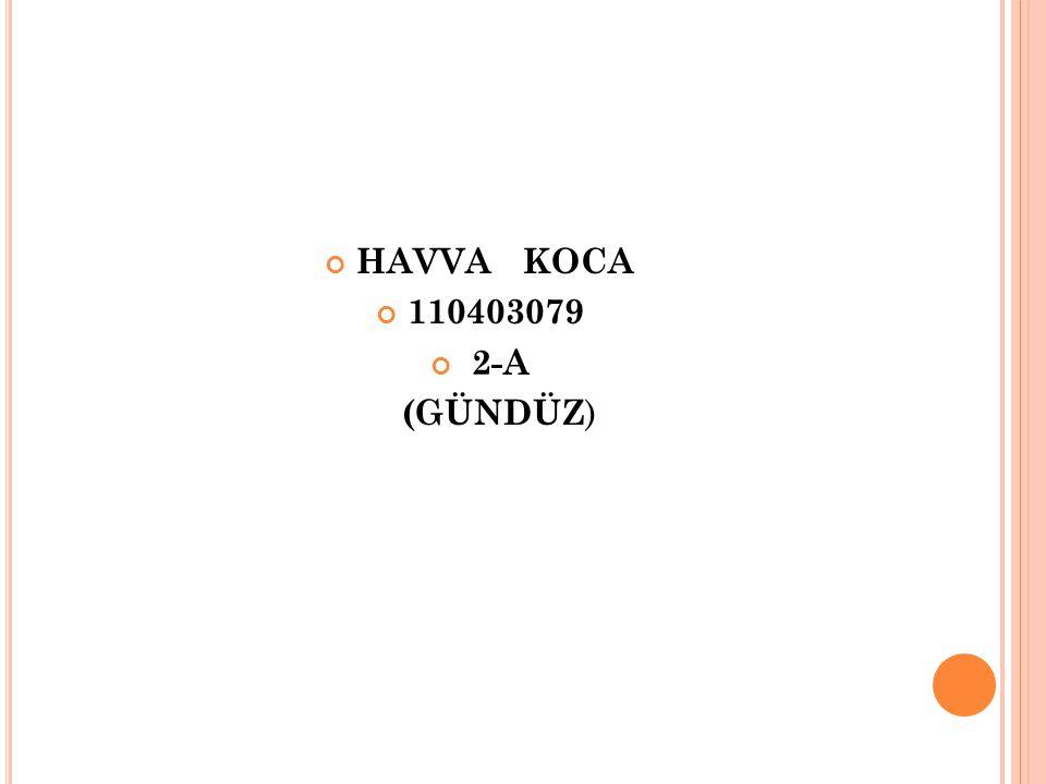HAVVA KOCA 110403079 2-A (GÜNDÜZ )