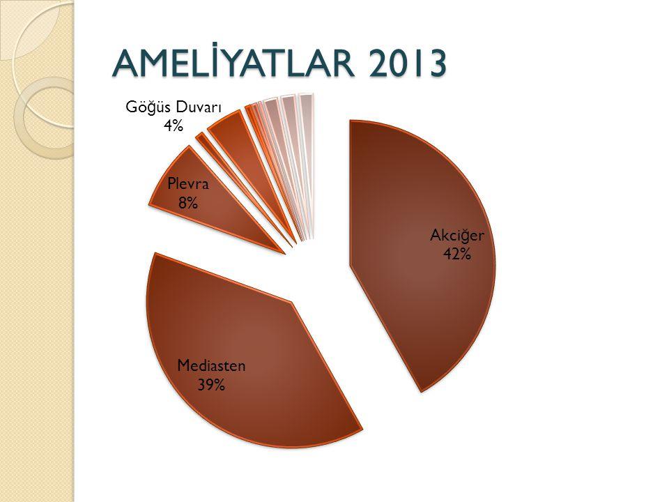 AMEL İ YATLAR 2013