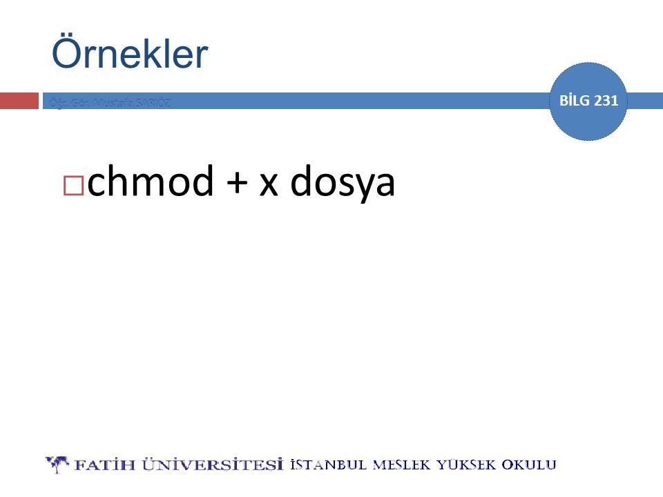 BİLG 231 Örnekler  chmod + x dosya