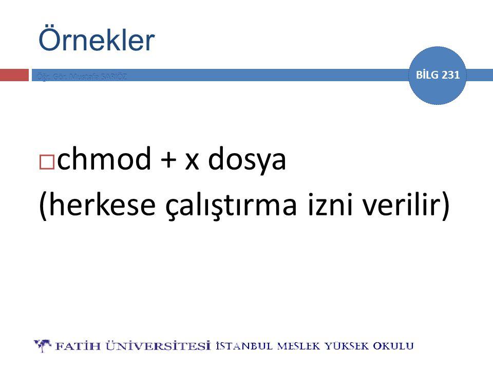 BİLG 231 Örnekler  chmod + x dosya (herkese çalıştırma izni verilir)