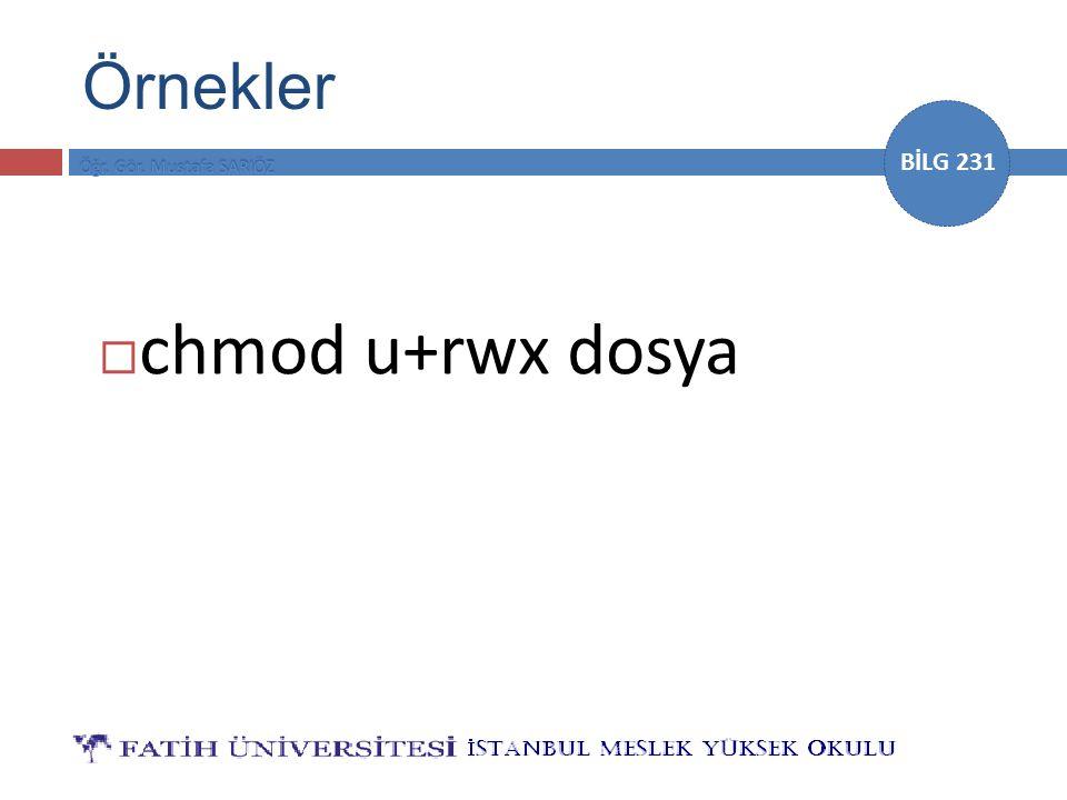 BİLG 231  chmod u+rwx dosya Örnekler