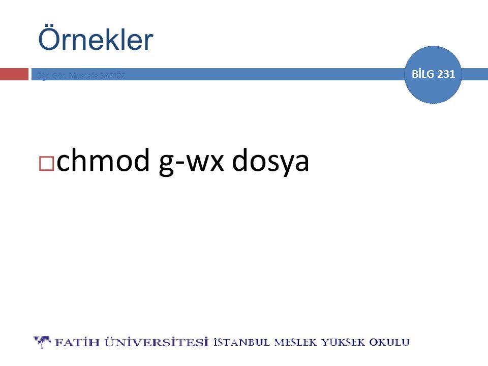 BİLG 231  chmod g-wx dosya Örnekler