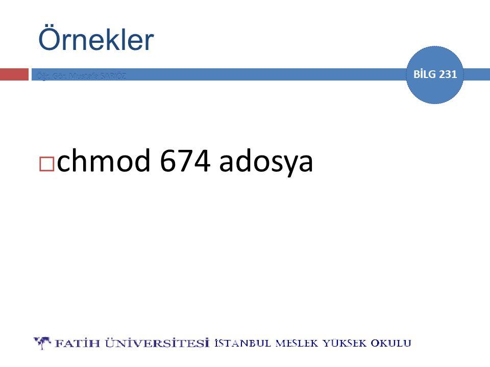 BİLG 231 Örnekler  chmod 674 adosya