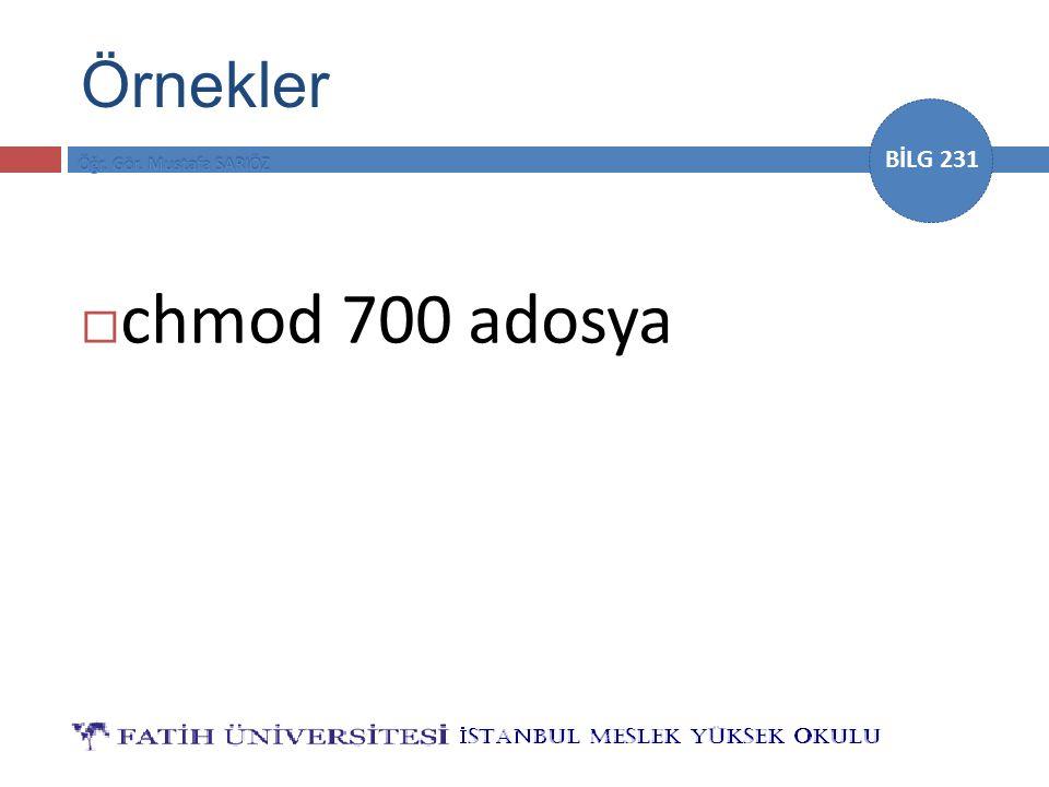 BİLG 231 Örnekler  chmod 700 adosya