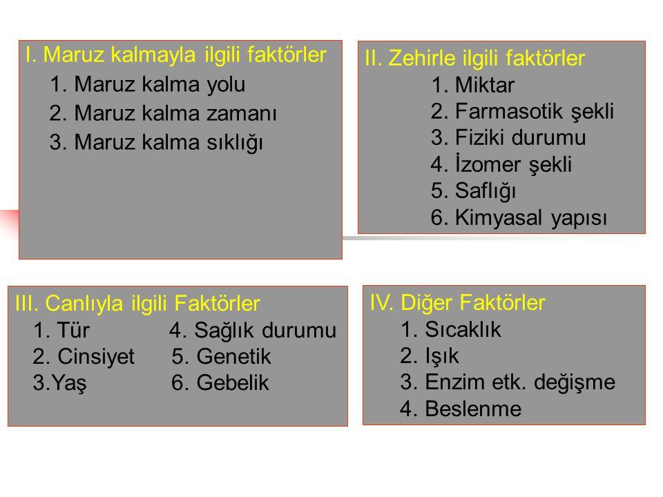 I.Maruz kalmayla ilgili faktörler 1. Maruz kalma yolu Ağız, deri, solunum 2.