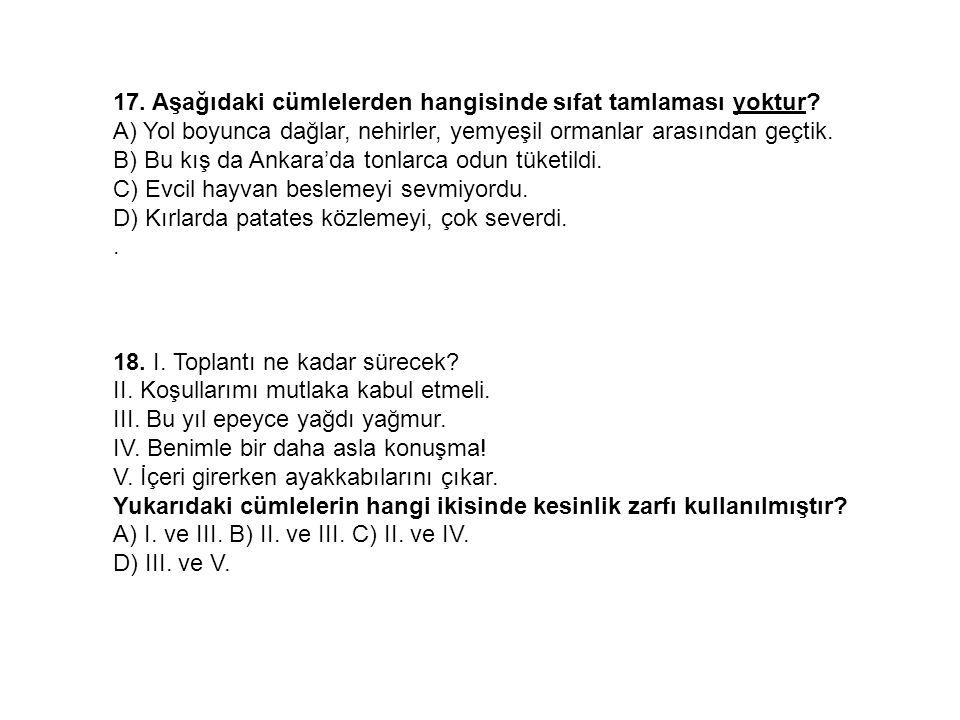 17. Aşağıdaki cümlelerden hangisinde sıfat tamlaması yoktur? A) Yol boyunca dağlar, nehirler, yemyeşil ormanlar arasından geçtik. B) Bu kış da Ankara'