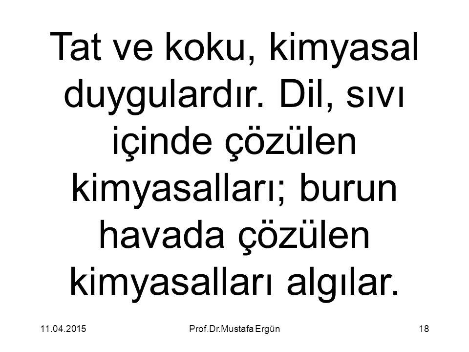 11.04.2015Prof.Dr.Mustafa Ergün18 Tat ve koku, kimyasal duygulardır. Dil, sıvı içinde çözülen kimyasalları; burun havada çözülen kimyasalları algılar.