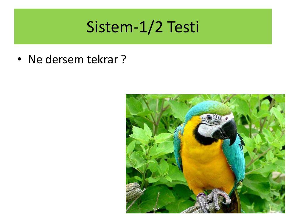 Sistem-1/2 Testi Ne dersem tekrar ?
