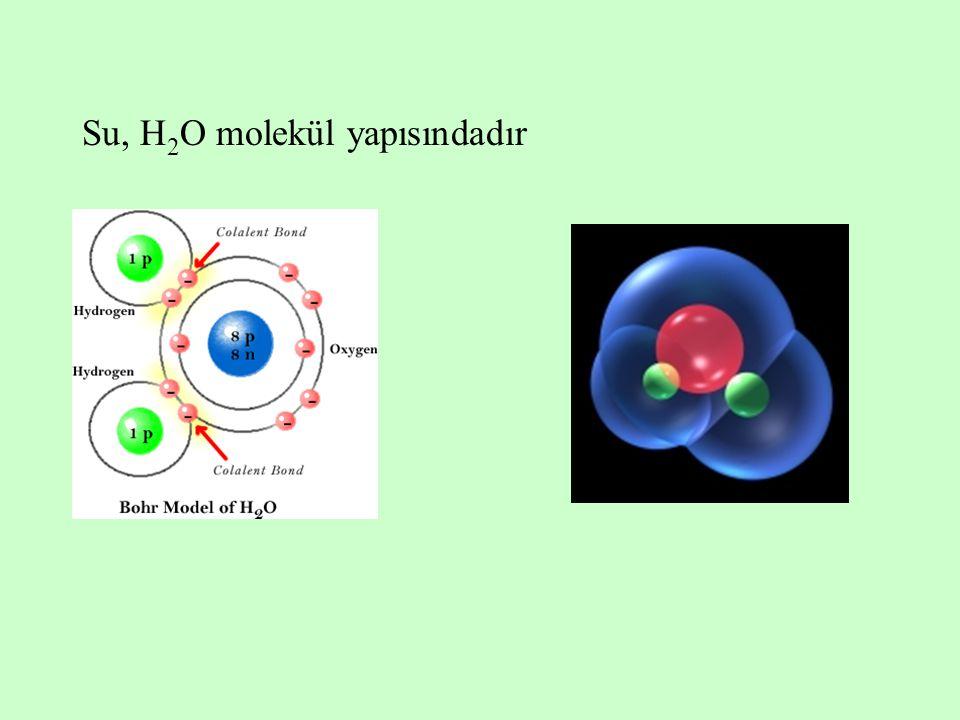 Su molekülünün oksijen tarafı elektronlardan zengindir ve lokal bir negatif (  ) yüklü bölge oluşturur; hidrojen tarafı da elektronlardan fakirdir ve lokal bir pozitif (+) yüklü bölge oluşturur