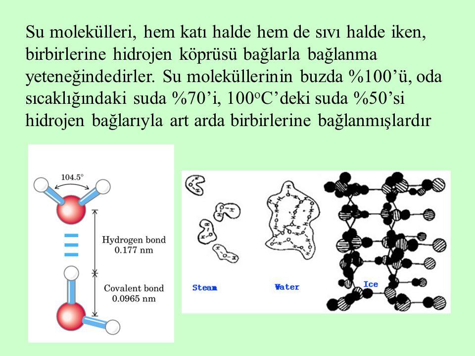 Su molekülleri, hem katı halde hem de sıvı halde iken, birbirlerine hidrojen köprüsü bağlarla bağlanma yeteneğindedirler. Su moleküllerinin buzda %100