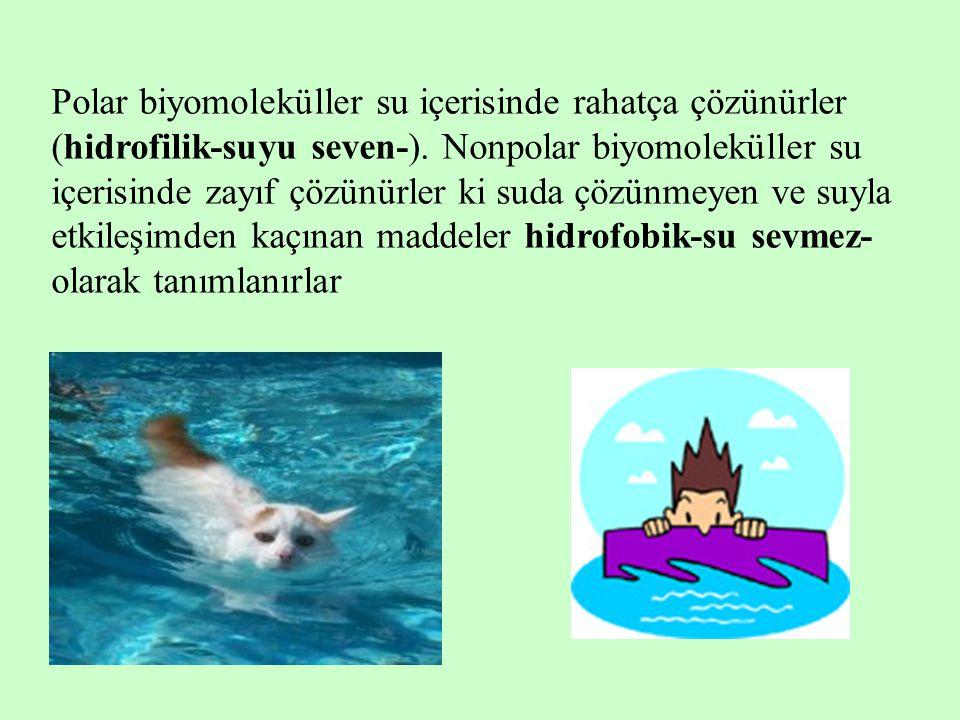 Polar biyomoleküller su içerisinde rahatça çözünürler (hidrofilik-suyu seven-). Nonpolar biyomoleküller su içerisinde zayıf çözünürler ki suda çözünme