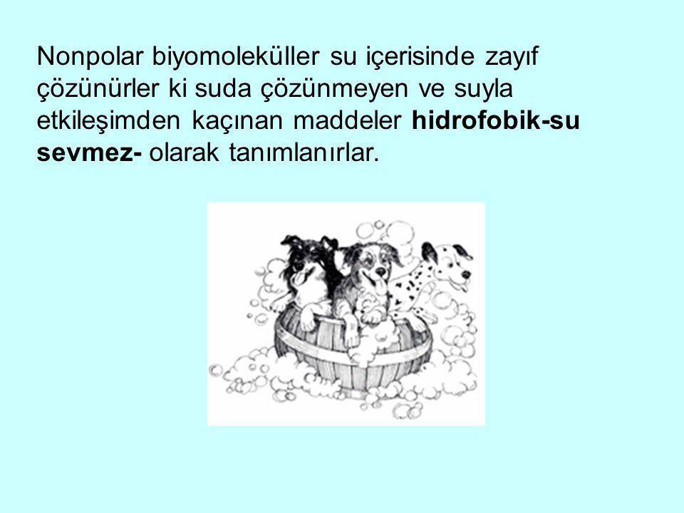 Nonpolar biyomoleküller su içerisinde zayıf çözünürler ki suda çözünmeyen ve suyla etkileşimden kaçınan maddeler hidrofobik-su sevmez- olarak tanımlan