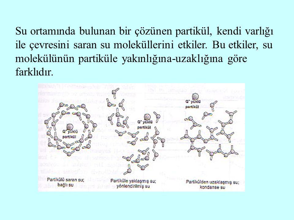 Su ortamında bulunan bir çözünen partikül, kendi varlığı ile çevresini saran su moleküllerini etkiler. Bu etkiler, su molekülünün partiküle yakınlığın