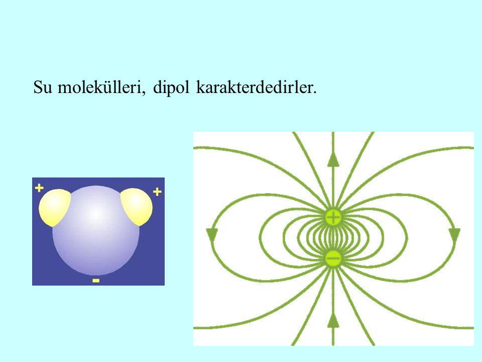 Su molekülleri, dipol karakterdedirler.