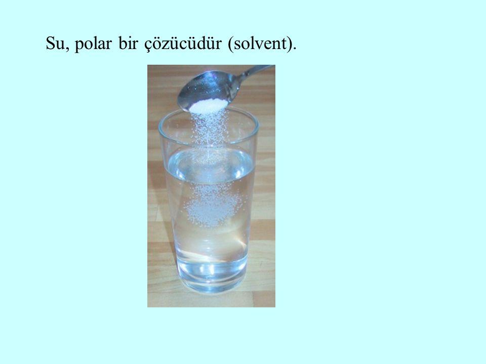 Su, polar bir çözücüdür (solvent).