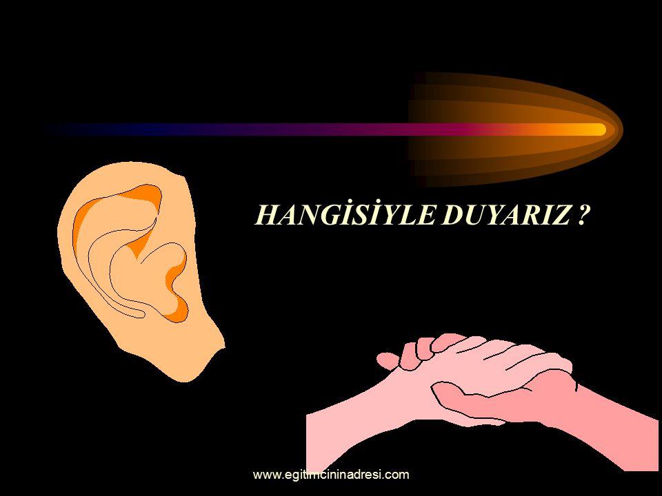 HANGİSİYLE DUYARIZ ? www.egitimcininadresi.com