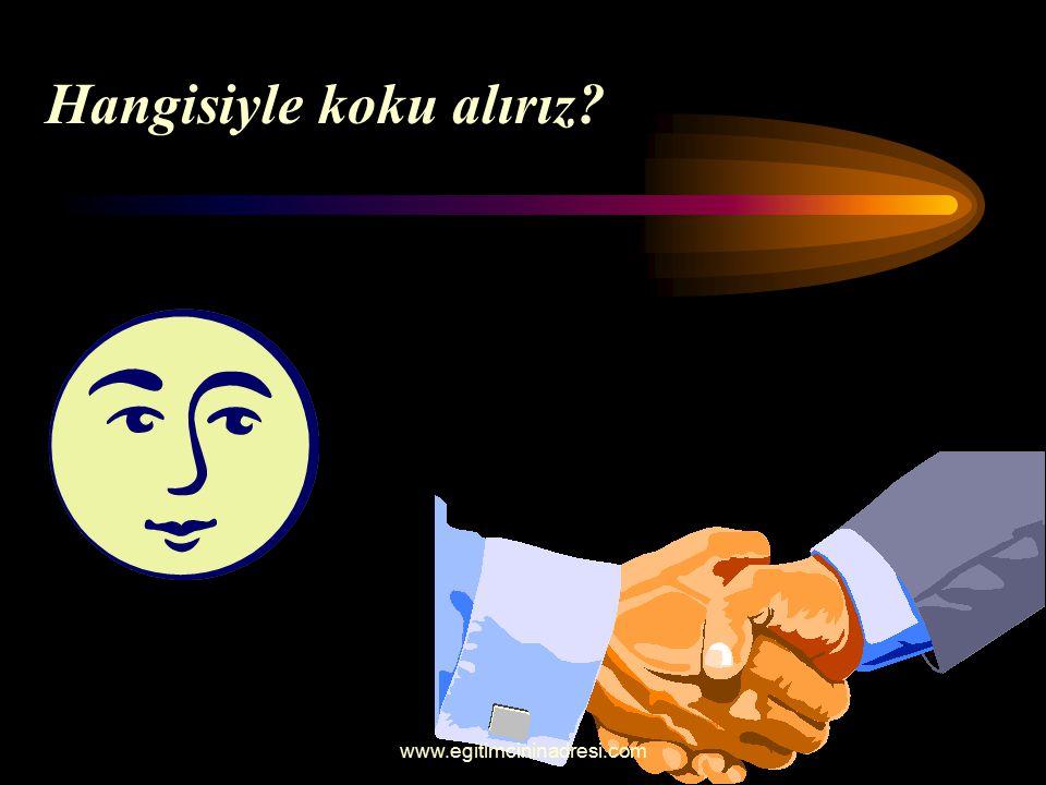 Hangisiyle koku alırız? www.egitimcininadresi.com