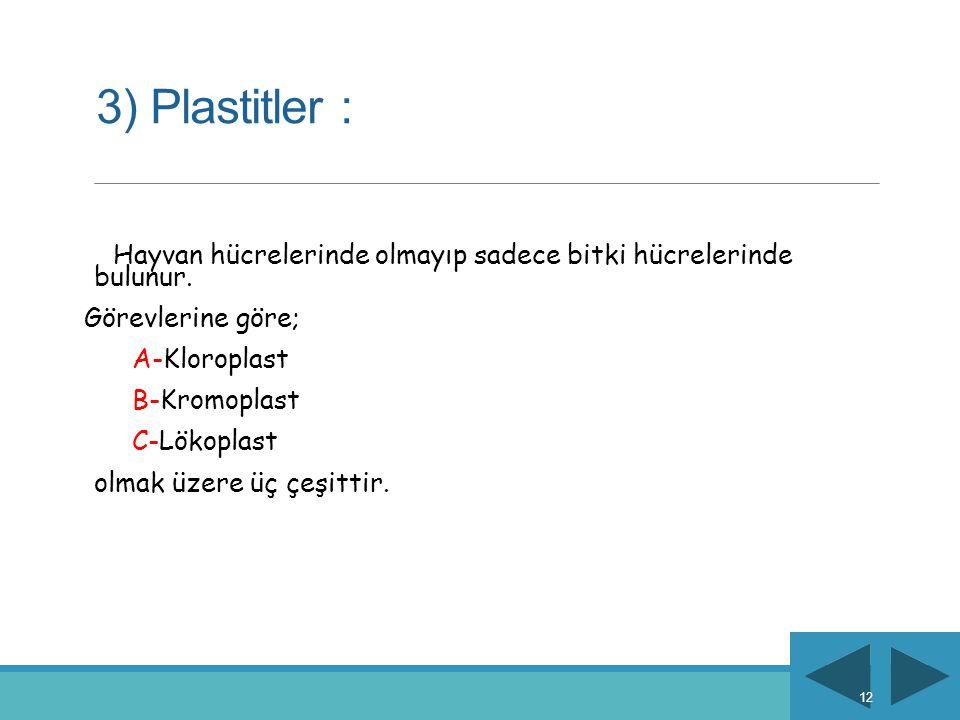 3) Plastitler : Hayvan hücrelerinde olmayıp sadece bitki hücrelerinde bulunur. Görevlerine göre; A-Kloroplast B-Kromoplast C-Lökoplast olmak üzere üç