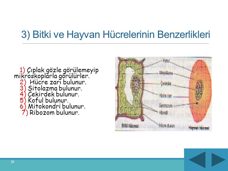 3) Bitki ve Hayvan Hücrelerinin Benzerlikleri 1) Çıplak gözle görülemeyip mikroskoplarla görülürler. 2) Hücre zarı bulunur. 3) Sitolazma bulunur. 4) Ç