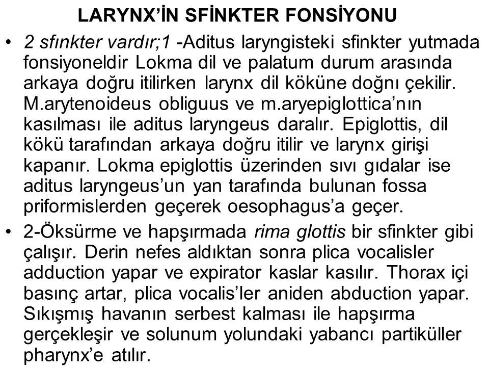 LARYNX'İN SFİNKTER FONSİYONU 2 sfınkter vardır;1 -Aditus laryngisteki sfinkter yutmada fonsiyoneldir Lokma dil ve palatum durum arasında arkaya doğru itilirken larynx dil köküne doğnı çekilir.
