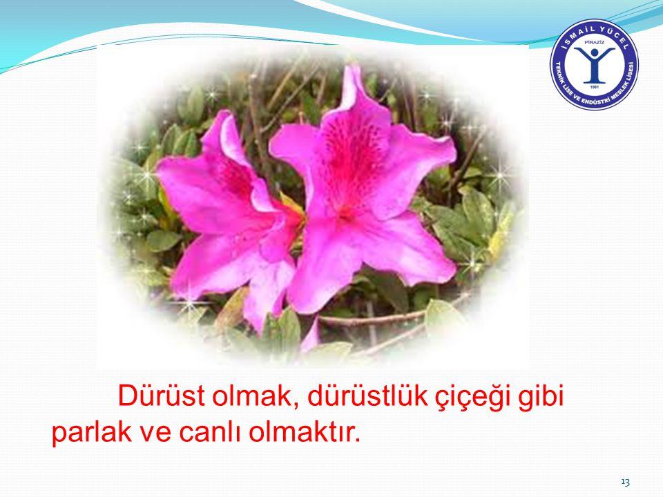 Dürüst olmak, dürüstlük çiçeği gibi parlak ve canlı olmaktır. 13