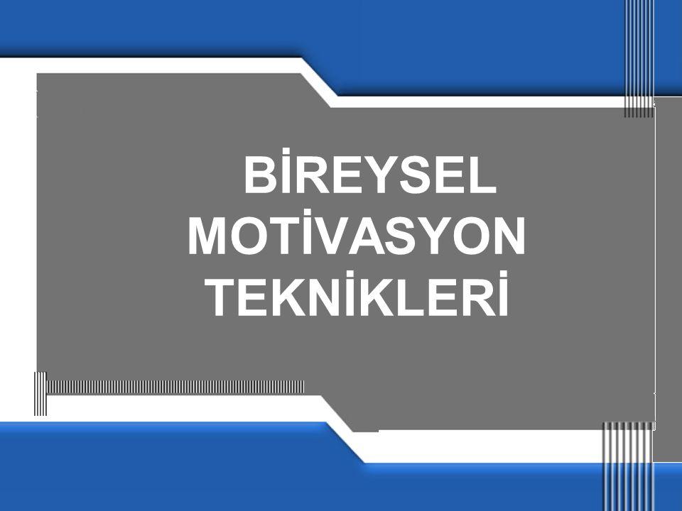 BİREYSEL MOTİVASYON TEKNİKLERİ