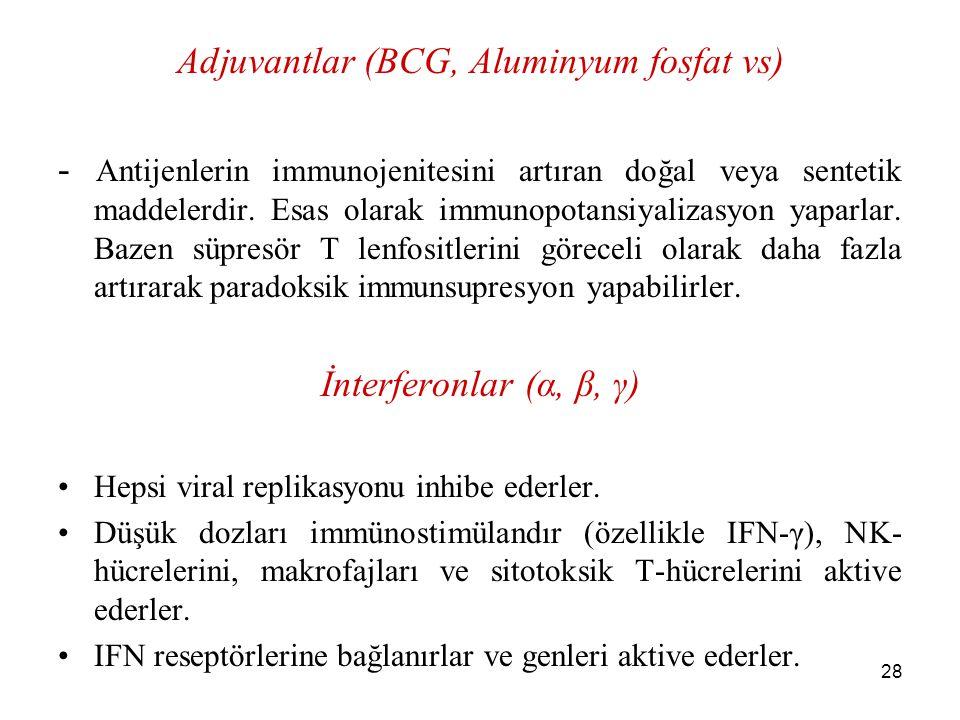 28 Adjuvantlar (BCG, Aluminyum fosfat vs) - Antijenlerin immunojenitesini artıran doğal veya sentetik maddelerdir. Esas olarak immunopotansiyalizasyon