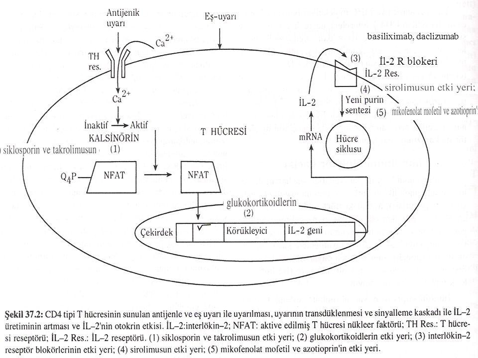 6 1-GLUKOKORTİKOİDLER - İmmun reaksiyonun iltihab öncesini ve reaksiyon dönemini non spesifik olarak suprese eder.
