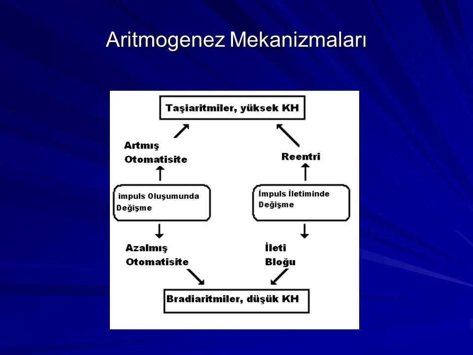 Aritmogenez Mekanizmaları