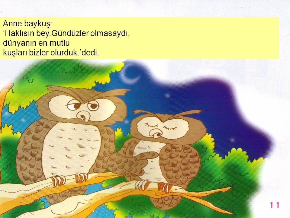 Anne baykuş: 'Haklısın bey.Gündüzler olmasaydı, dünyanın en mutlu kuşları bizler olurduk.'dedi.