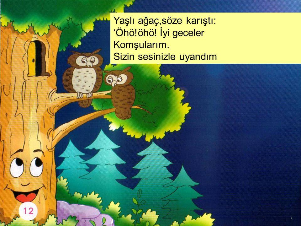 Yaşlı ağaç,söze karıştı: 'Öhö!öhö! İyi geceler Komşularım. Sizin sesinizle uyandım