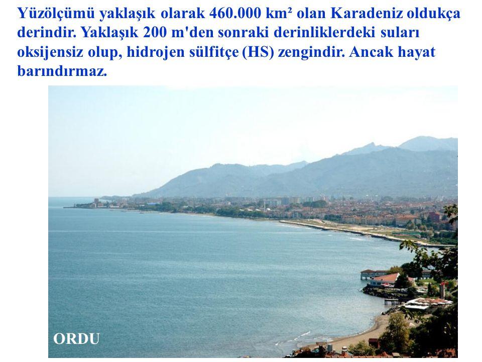 Kuzeyinde Kırım yarımadası ve Azak Denizi vardır. İstanbul Boğazı ile Marmara Denizi'ne, oradan da Çanakkale Boğazı ile Ege Denizi'ne bağlanır. GİRESU