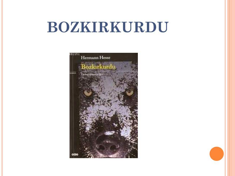 BOZKIRKURDU