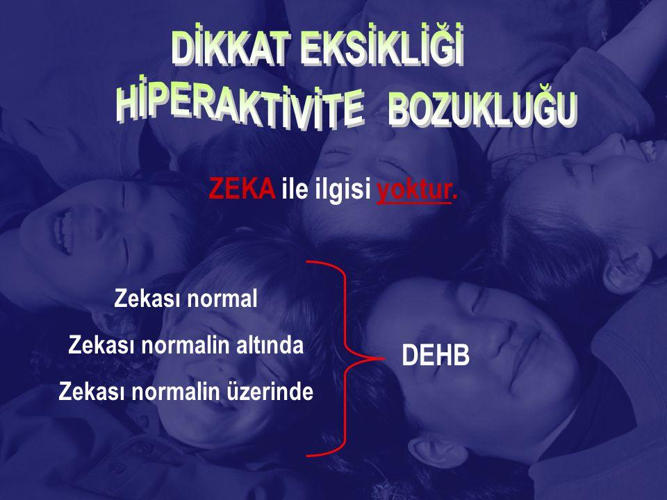 ZEKA ile ilgisi yoktur. Zekası normal Zekası normalin altında Zekası normalin üzerinde DEHB