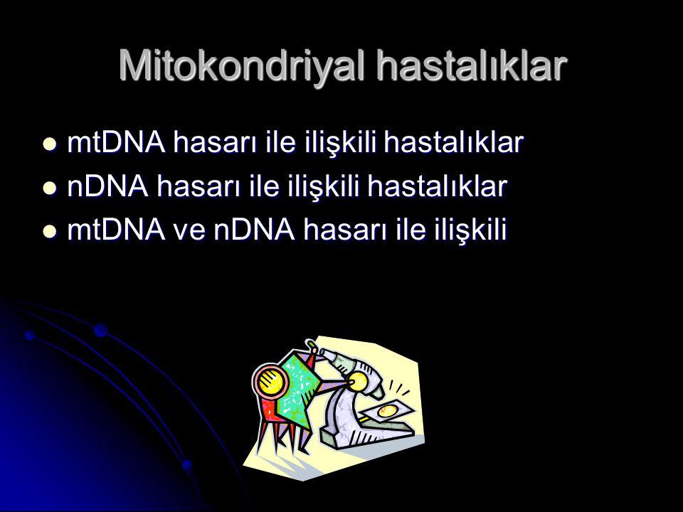 Mitokondriyal hastalıklar mtDNA hasarı ile ilişkili hastalıklar mtDNA hasarı ile ilişkili hastalıklar nDNA hasarı ile ilişkili hastalıklar nDNA hasarı