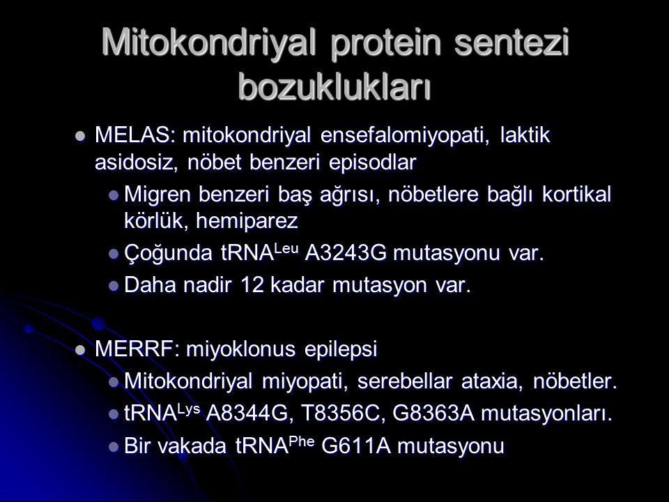 MELAS: mitokondriyal ensefalomiyopati, laktik asidosiz, nöbet benzeri episodlar MELAS: mitokondriyal ensefalomiyopati, laktik asidosiz, nöbet benzeri