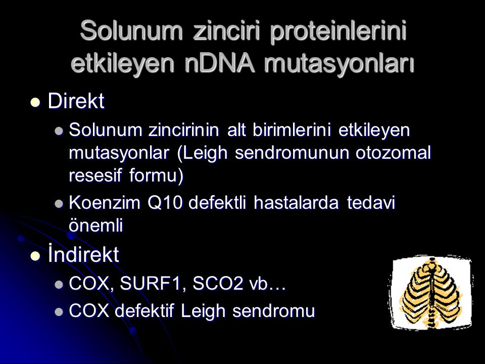 Solunum zinciri proteinlerini etkileyen nDNA mutasyonları Direkt Direkt Solunum zincirinin alt birimlerini etkileyen mutasyonlar (Leigh sendromunun ot
