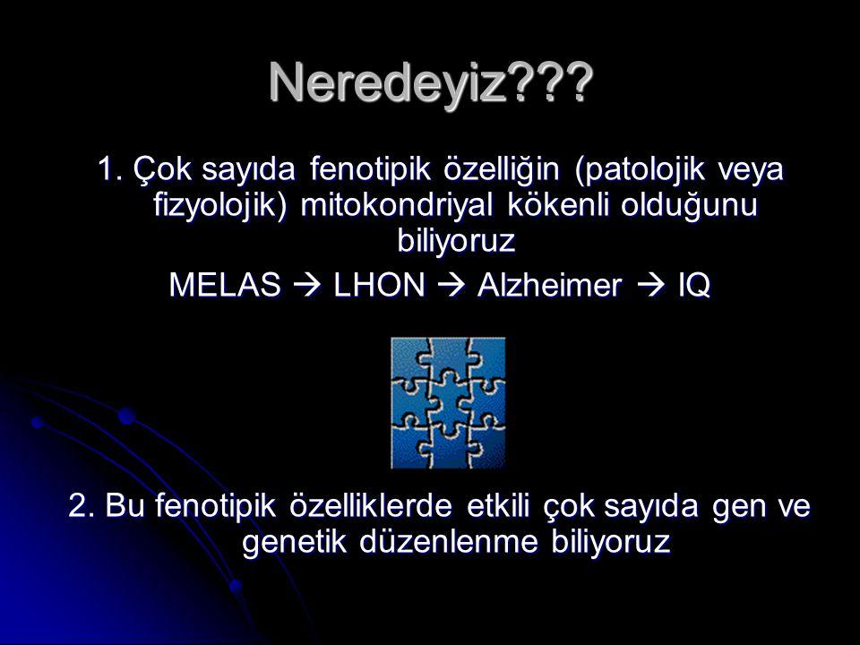 Neredeyiz??? 1. Çok sayıda fenotipik özelliğin (patolojik veya fizyolojik) mitokondriyal kökenli olduğunu biliyoruz MELAS  LHON  Alzheimer  IQ 2. B