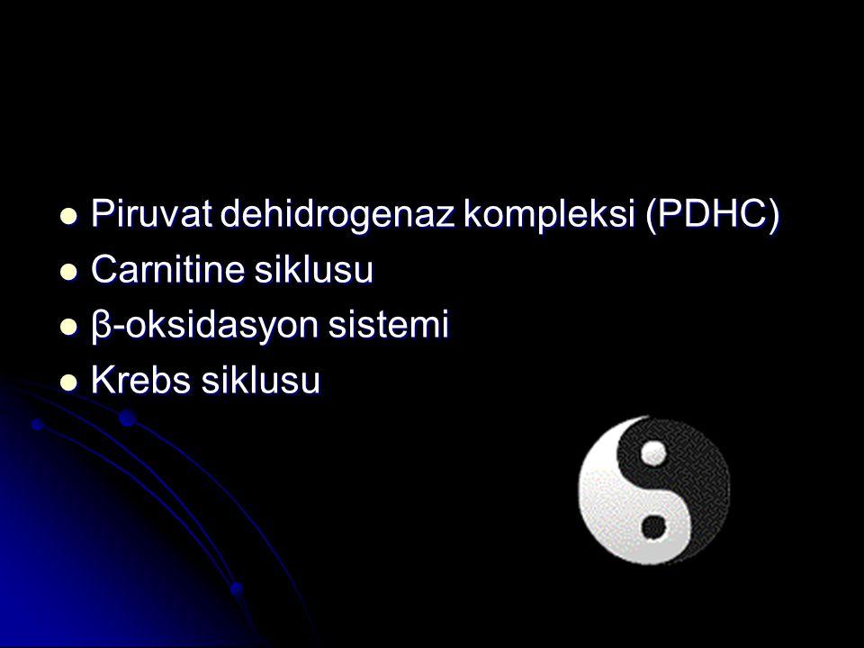 Piruvat dehidrogenaz kompleksi (PDHC) Piruvat dehidrogenaz kompleksi (PDHC) Carnitine siklusu Carnitine siklusu β-oksidasyon sistemi β-oksidasyon sist