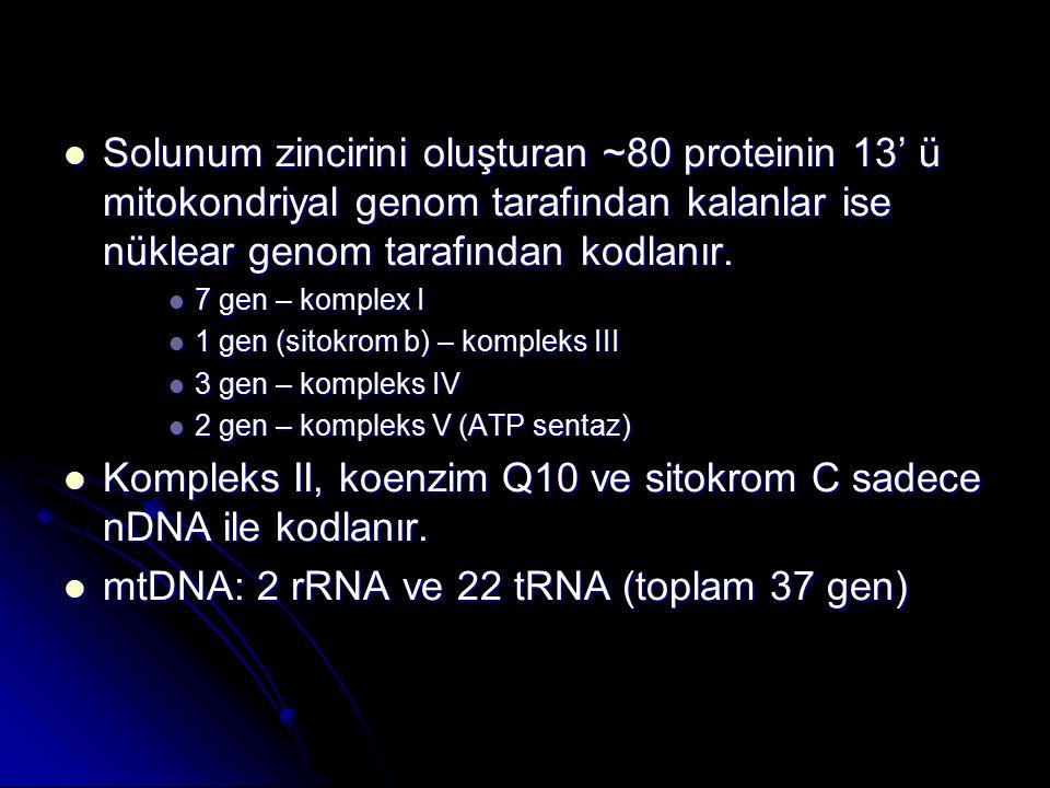 Mitokondriyal DNA duplikasyonları Mitokondriyal DNA duplikasyonları KSS, diabetes mellitus ve sağırlık gösteren hastalarda tek delesyonlara ek olarak duplikasyon içeren mtDNA molekülleride bulunabilir.