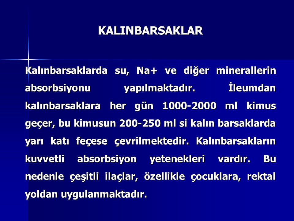 KALINBARSAKLAR Kalınbarsaklarda su, Na+ ve diğer minerallerin absorbsiyonu yapılmaktadır.