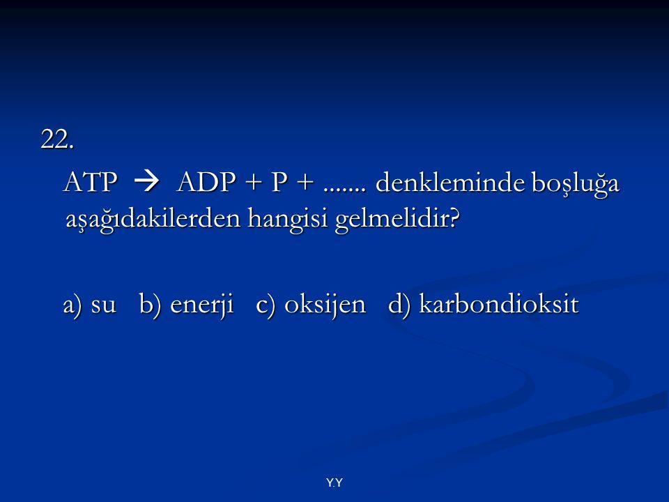 Y.Y 22. ATP  ADP + P +....... denkleminde boşluğa aşağıdakilerden hangisi gelmelidir? ATP  ADP + P +....... denkleminde boşluğa aşağıdakilerden hang